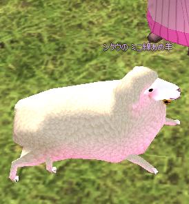 2009-04-11_00-15-10_Mabinogi もふもふ羊 b.png